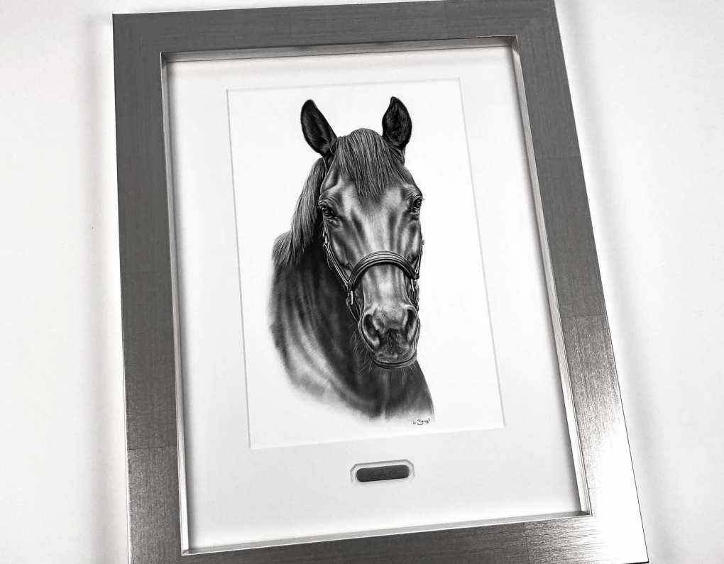 referenz pferdekopf zeichnung