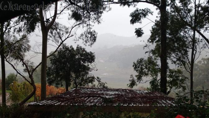 grey skies fog 1505