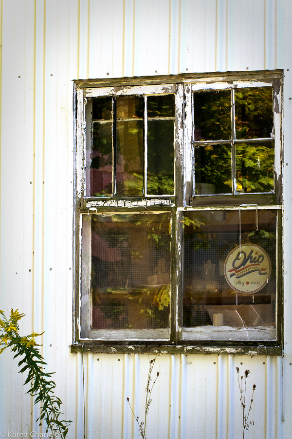 Antique Windows (6/6)
