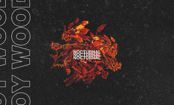 roy wood$ nocturnal
