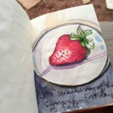 Last Strawberry of Summer