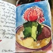 Birthday Cactus Nano Sketch