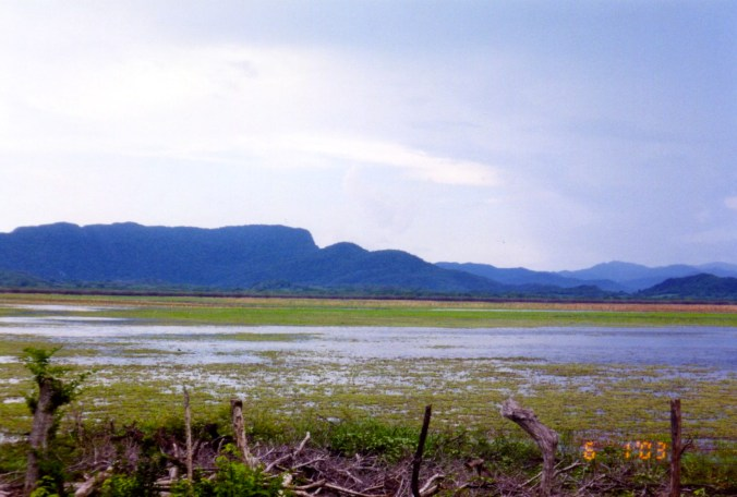 Swampy area in Pale Verde Costa Rica with mountains