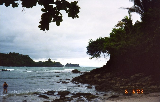 Beach rainforest - Manuel Antonio (2)