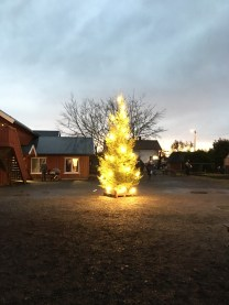 Christmas celebrations 2016