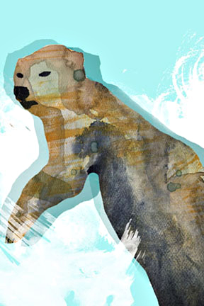 Swimming Bear - Arc Poetry Magazine - Illustration by Karen Hibbard