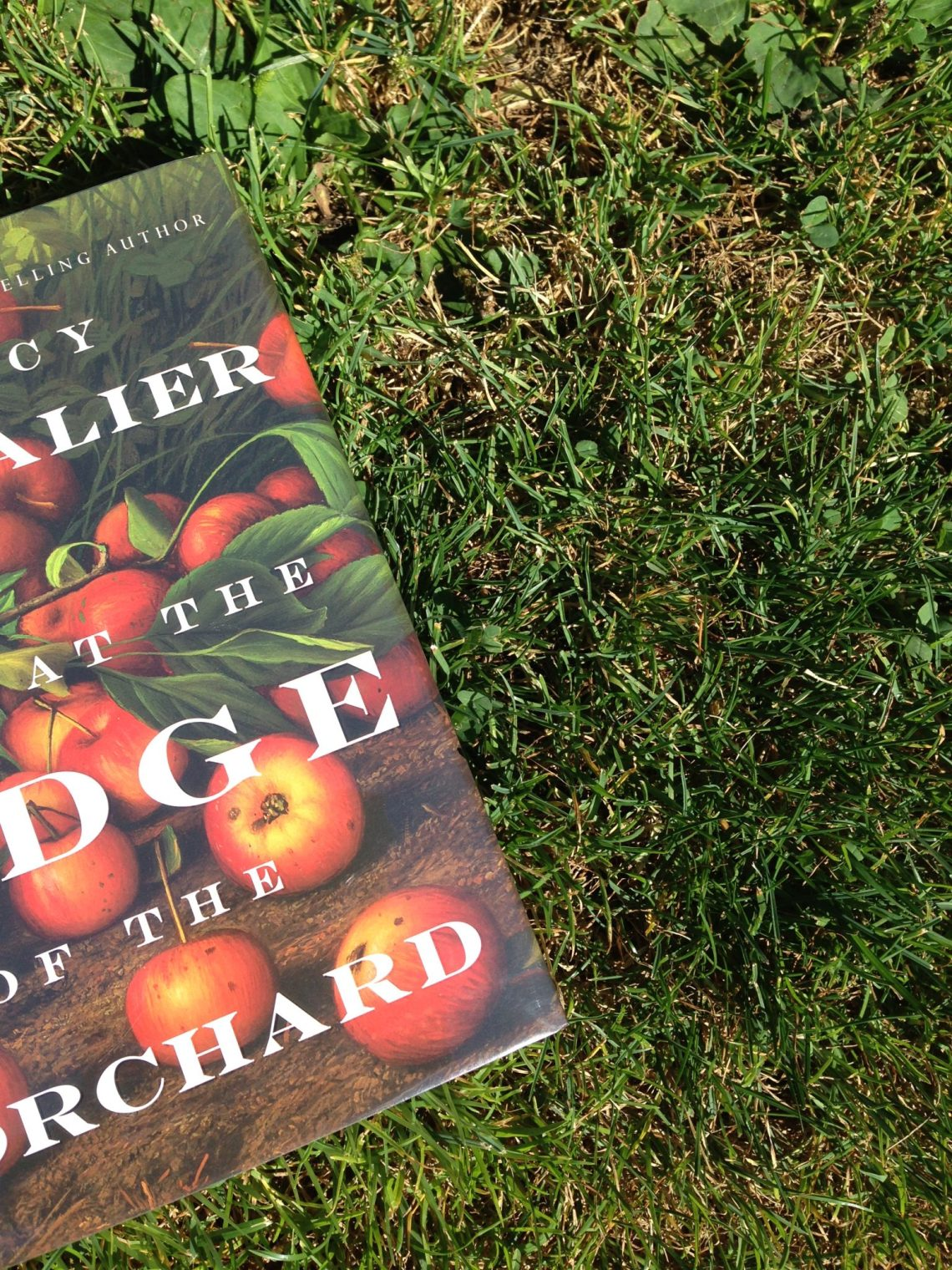 Tracy Chevalier novel, At the Edge of the Orchard