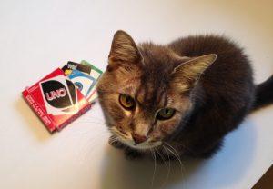 Aleksy with UNO cards