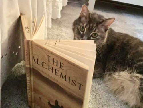 The Alchemist and Aleksy, Karen Hugg, www.karenhugg.com/category/books #TheAlchemist #PaulCoehlo #cats