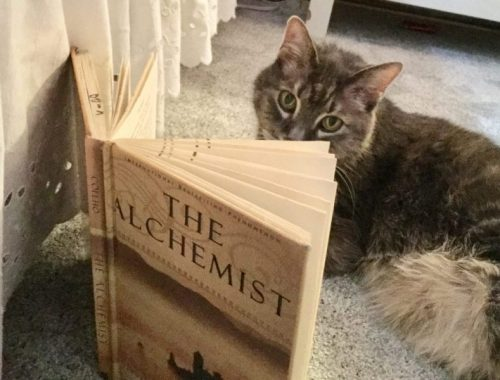 The Alchemist and Aleksy, Karen Hugg, www.karenhugg.com/category/books #TheAlchemist #PaulCoehlo #cats