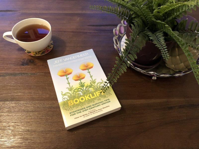 My Struggle with Social and Solitary Time, Karen Hugg, Booklife, Jeff Vandermeer, https://karenhugg.com/2016/05/20/booklife #Booklife #books #JeffVandermeer #writing #nonfiction #writinglife