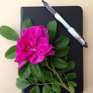 Rose and Journal, It's Time to Share the Private Side of My Life, https://karenhugg.com/2020/10/14/private-side/(opens in a new tab), #author, #KarenHugg, #fiction #books #writing, #journal, #authorbrand, #privateside