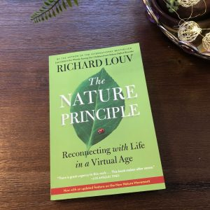The Nature Principle Book, The Profound Questions in the Nature Principle, Daily Stress ReLeaf, Karen Hugg, https://karenhugg.com/2021/02/24/nature-principle/(opens in a new tab), #thenatureprinciple #plants #mentalhealth #books #RichardLouv #destressing