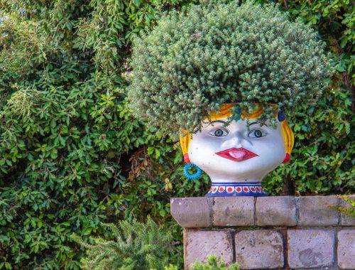 Head Planter, Three Unique Ways to Play With Plants, Daily Stress ReLeaf, Karen Hugg, https://karenhugg.com/2021/03/01/ways-to-play-with-plants/, #play #plants #uniqueplanters #food #fantasygarden #fairygarden #dailystressreleaf #destressing #relaxation #gardening #food #vegetablechips