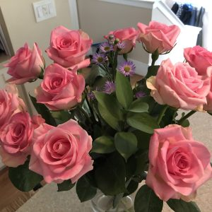 Pink Roses, Do Cut Flowers Put You in a Better Mood? Daily Stress ReLeaf, Karen Hugg, https://karenhugg.com/2021/03/04/cut-flowers-better-mood, #cutflowers #bettermood #dailystressreleaf #plants #relaxation #destressing #mentalhealth #roses