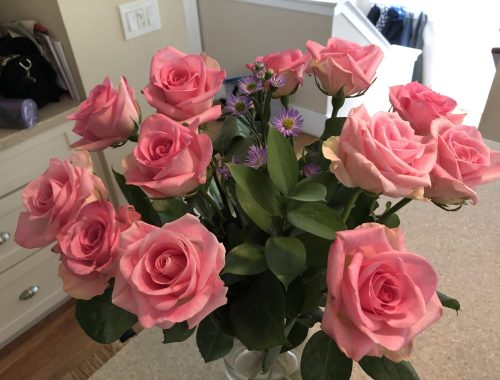 Pink Roses, Do Cut Flowers Put You in a Better Mood? Daily Stress ReLeaf, Karen Hugg, https://karenhugg.com/2021/03/04/cut-flowers-better-mood, #cutflowers #bettermood #dailystressreleaf #plants #relaxation #destressing #mentalhealth #roses