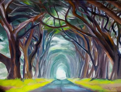 Point Reyes Tree Tunnel 1, Karen Huss