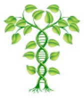 stock-illustration-17844079-dna-plant-concept