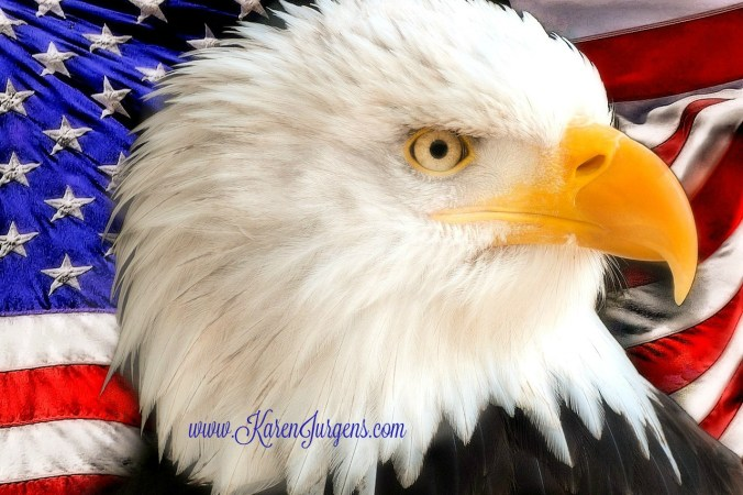 Happy Independence Day by Karen Jurgens