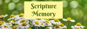 Heartwings Front Porch Bible Study Series Week 24 Parable of the Sower Scripture Memory by Karen Jurgens