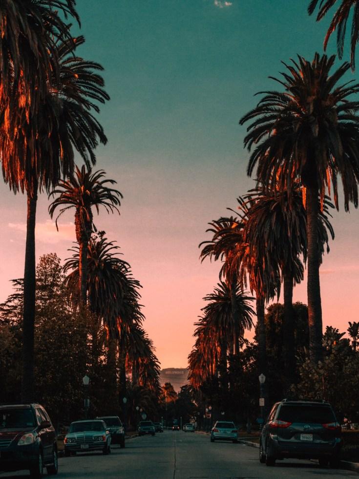 usa-hollywood-california-3