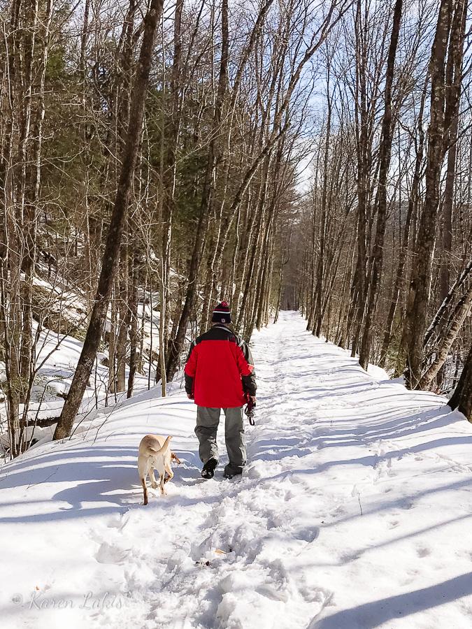 snowy-winter-walks