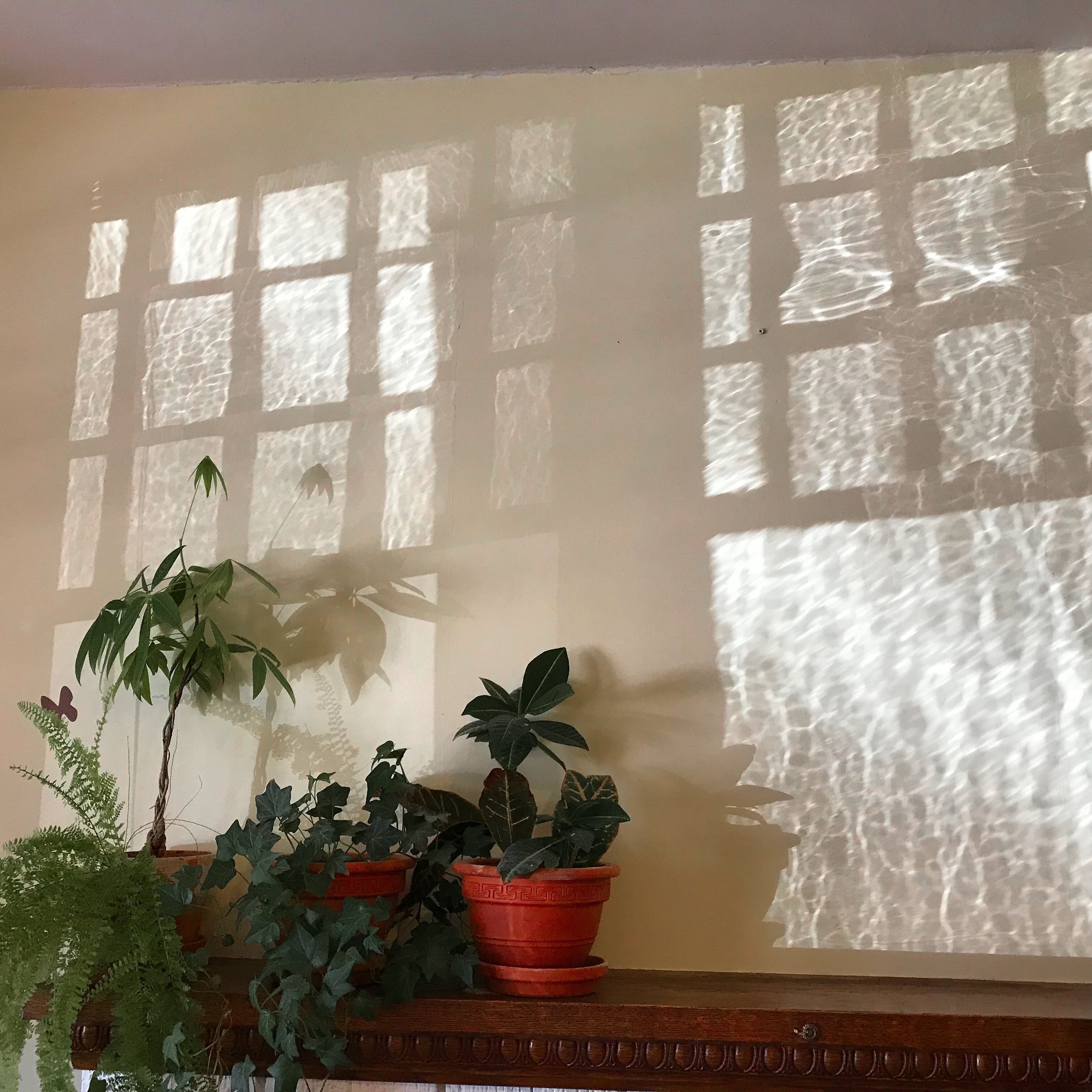 sunlight reflecting in wavy patterns on the wall