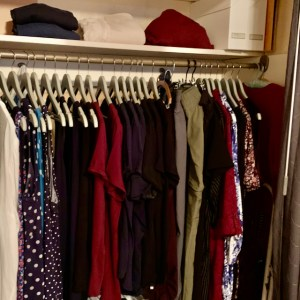 tidy closet with about 40 pieces of clothing hanging and a few folded items