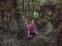 Ireland Fairy Forrest 1