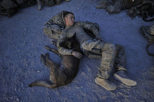 Image of partners in a K-9 combat tracker team resting