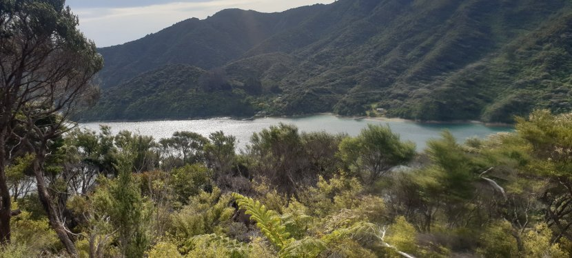 Day 79-85 Queen Charlotte Track.