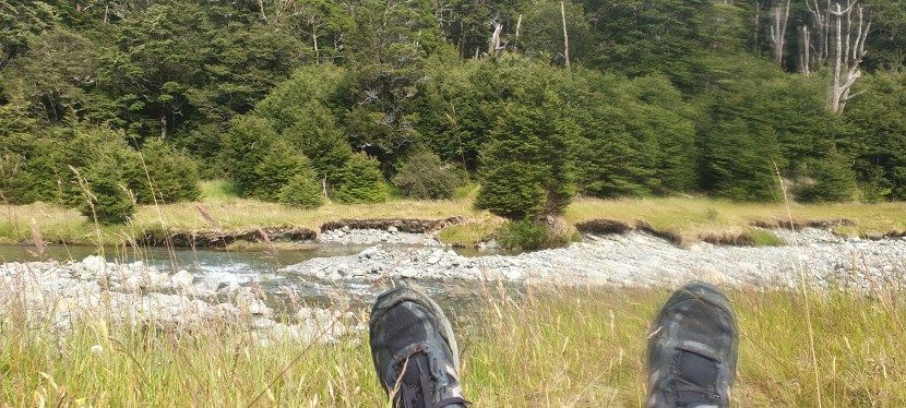 Day 98-104 – St James Walkway then a wait in Christchurch