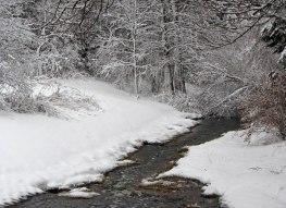 Neighborhood creek ©2014 Karen A Johnson