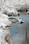 Snowy bank ©2014 Karen A Johnson