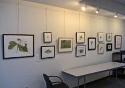 GNSI exhibit 1 © 2014 Karen A. Johnson