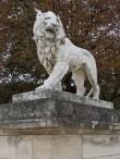 Lion © 2014 Karen A. Johnson