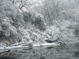Winter wonderland © 2015 Karen A. Johnson