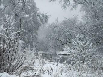 Winter wonderland 2 © 2015 Karen A. Johnson