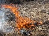 Line of fire © 2015 Karen A. Johnson