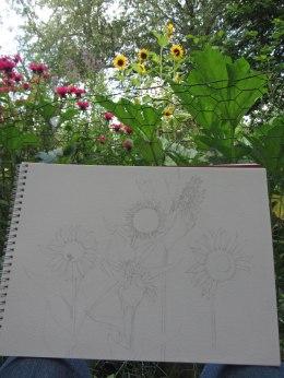 Sketching sunflowers © 2015 Karen A. Johnson