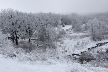 Frost in the valley 2 © 2015 Karen A. Johnson