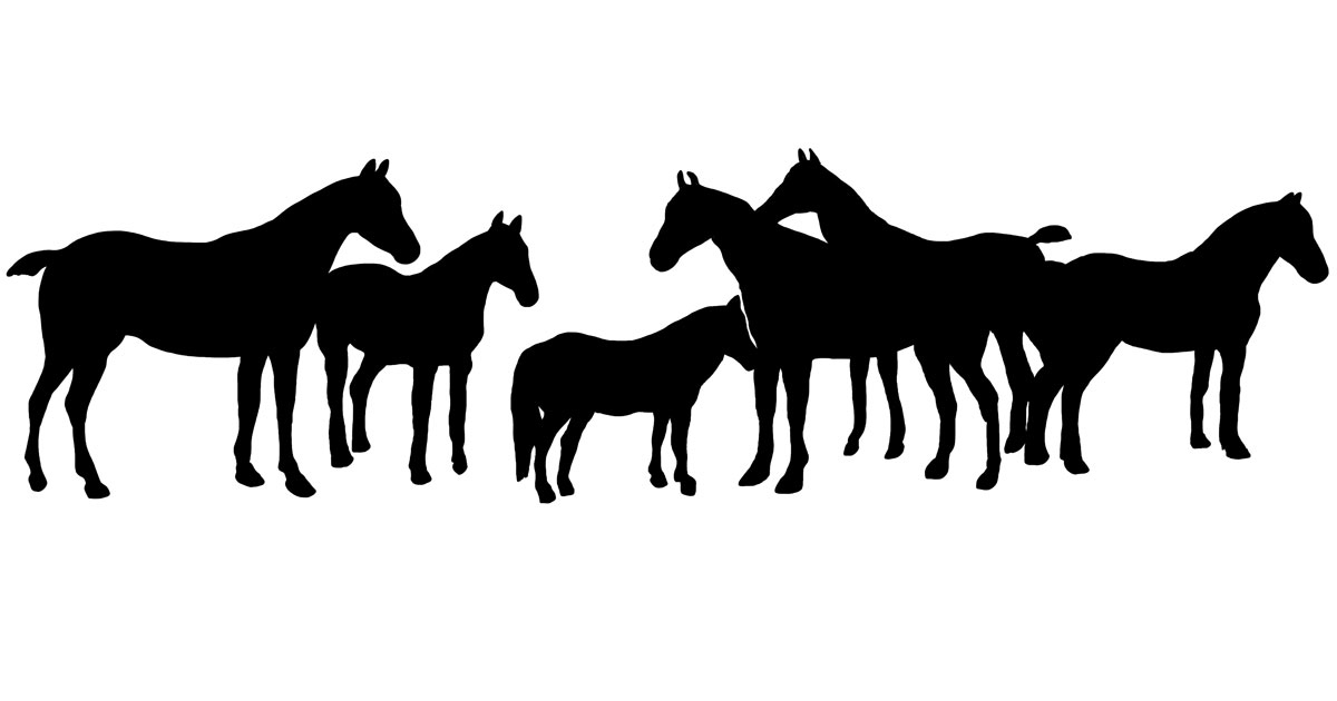 Horse And Carriage Clip Art