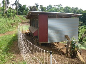 Chicken coop is finished with boxes raised to a nice height for easy access