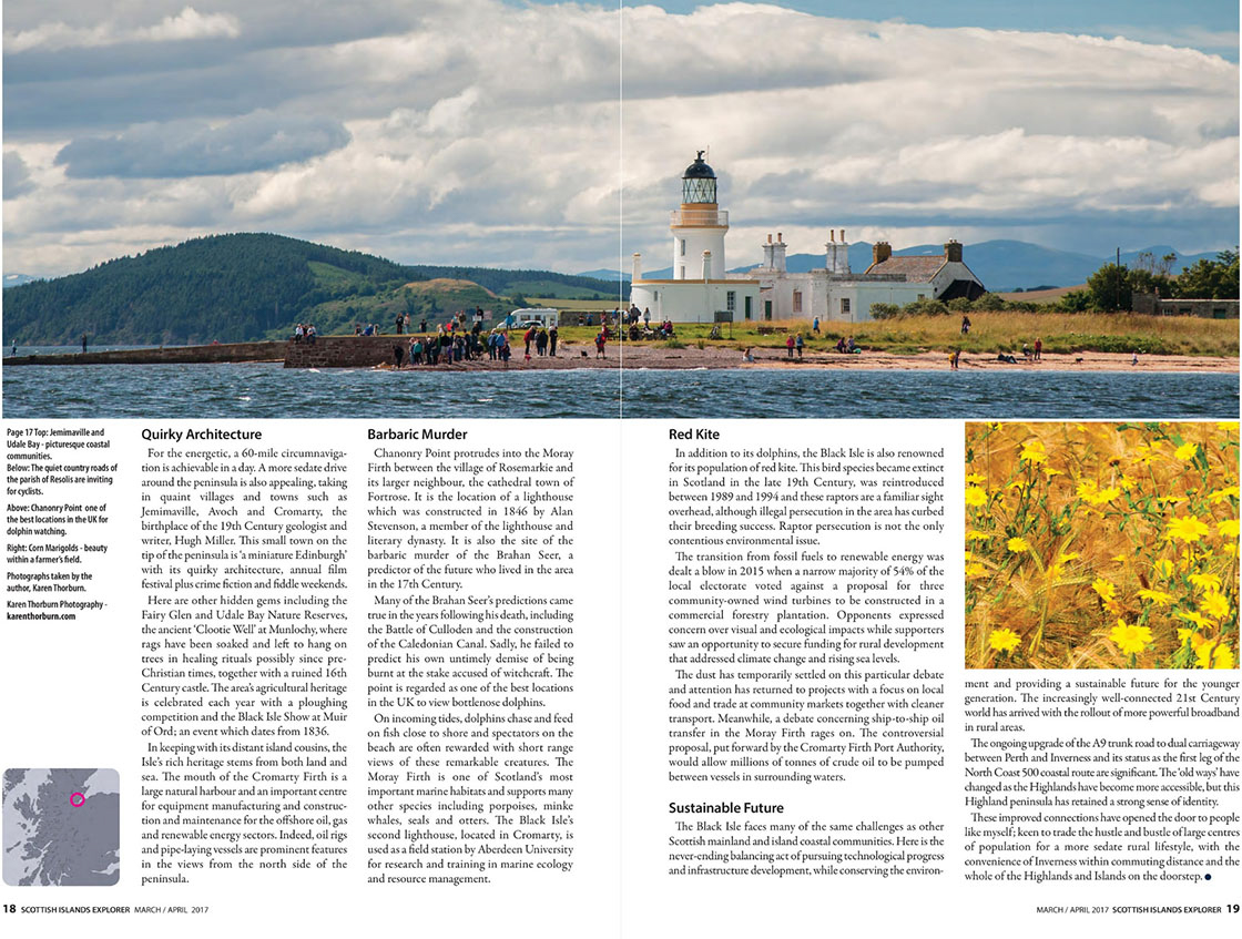 Guest blogger - magazine article with text and panorama of a lighthouse with people on a beach, and a photo of yellow flowers
