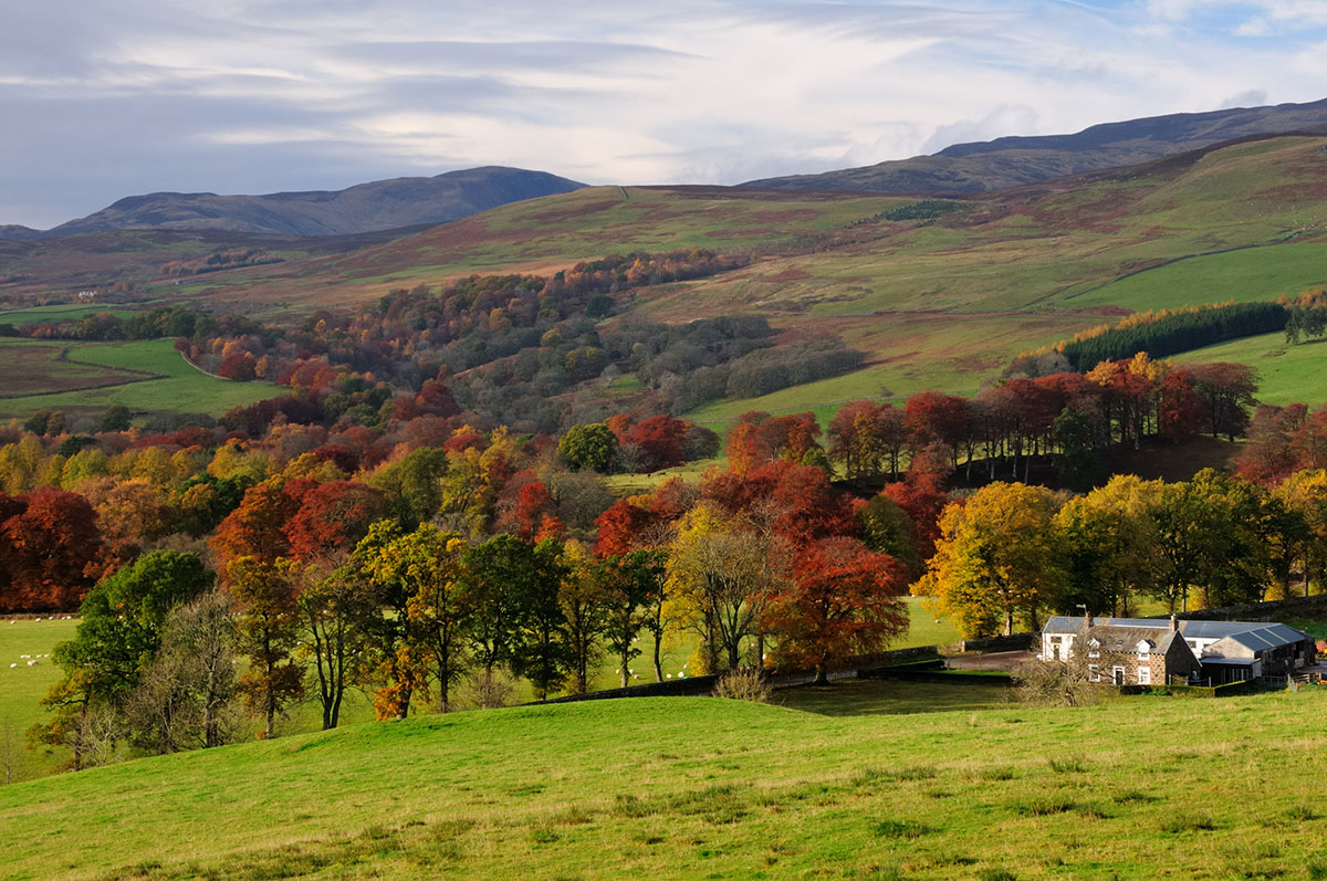 View over a Scottish landscape, with farm buildings in the foreground, trees in autumn foliage and hills and mountains beyond