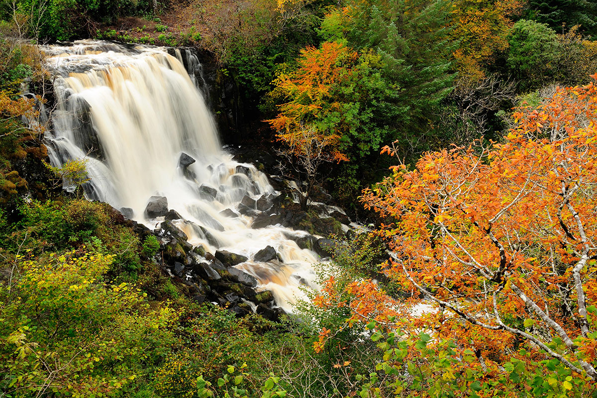 Large waterfall in a river with rocks breaking the water surface, surrounded by autumn foliage, in green and orange colours