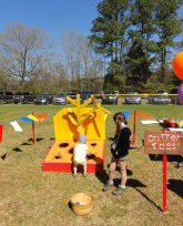 Clydefest-2014-field-8