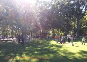 Herman-Park-201410-7