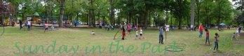 Hooping Herman Park 8