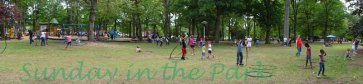 Hooping Herman Park 8